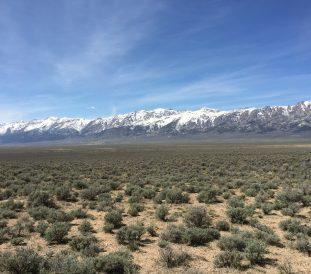 Ruby Valley Camping Trek