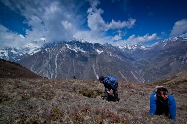 Tsum Valley Camping Trek